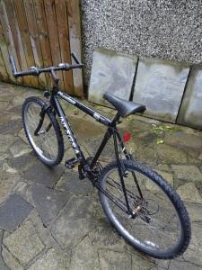 Phantom Integra Mountain Bike - 2