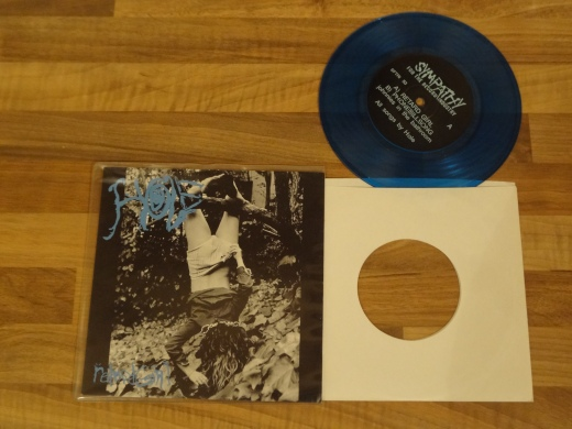 Hole - Retard Girl Blue 7 Inch Vinyl